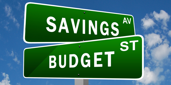 Budget for everything