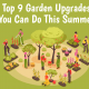 gardening activities you can do this summer